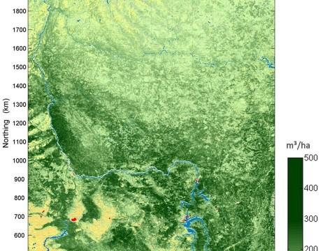 Waldkarte Zentral-Sibirien