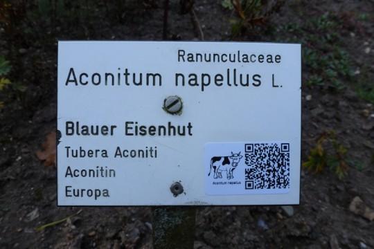 Bild: Botanischer Garten/Uni Gießen