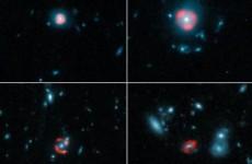 Bild: ALMA (ESO/NRAO/NAOJ), Y. Hezaveh et al.